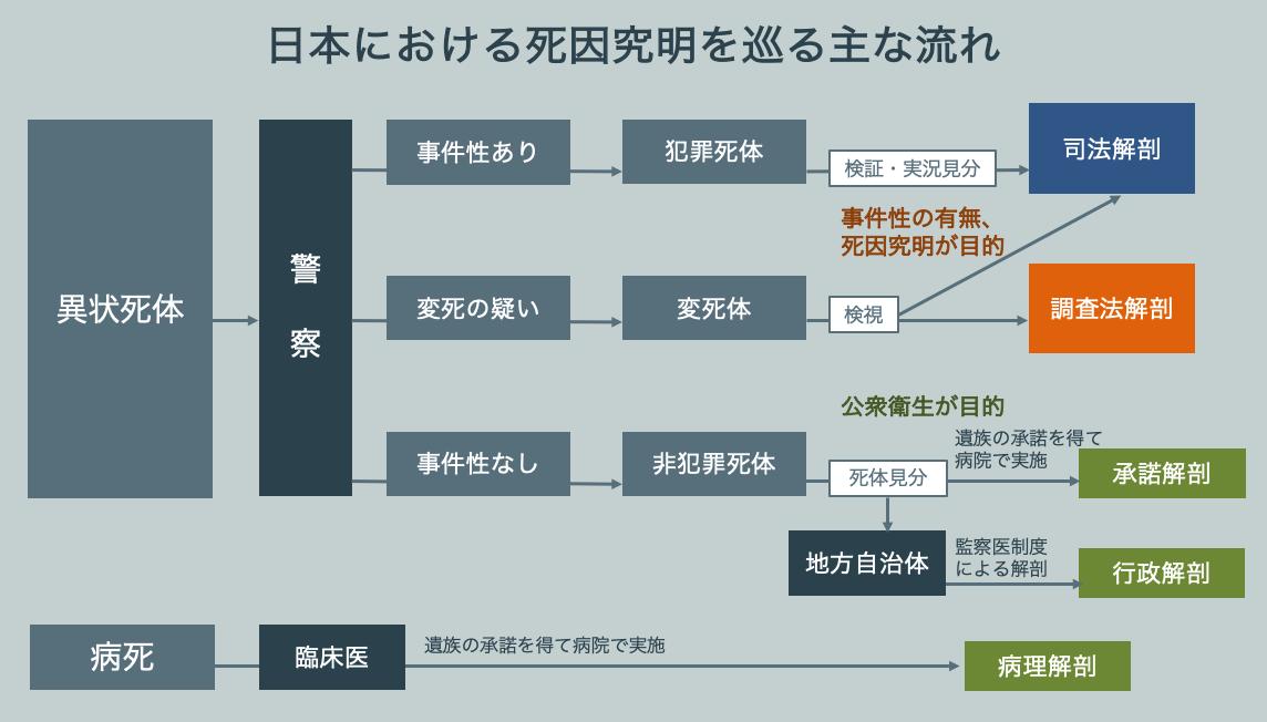 日本における死因究明を巡る主な流れ